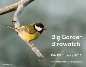 RSPB big garden birdwatch